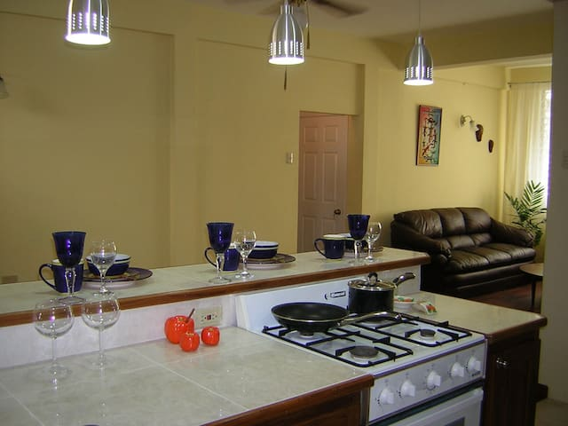 Spacious, Safe, convenient, Entire D/Martin apt - Petit Valley - Apartment