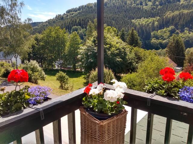 Eifel rustig en natuurlijk logeren in Zendscheid