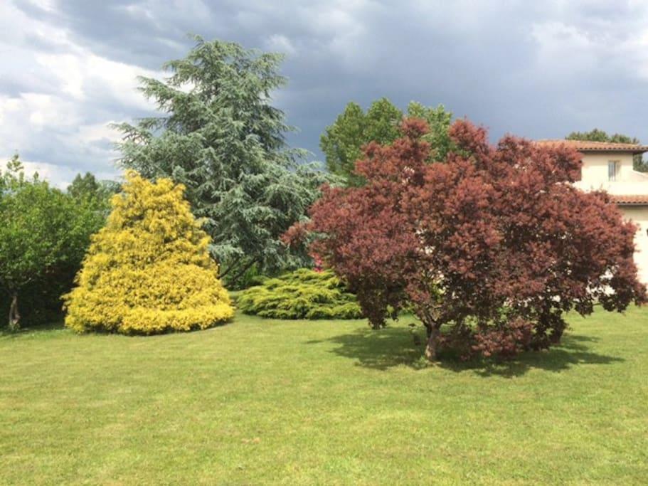 Jardin paysager devant la maison