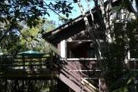 Matheson Bay Treehouse - Leigh - Dom