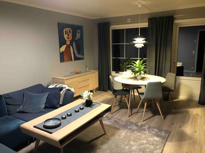 Ny og lys leilighet