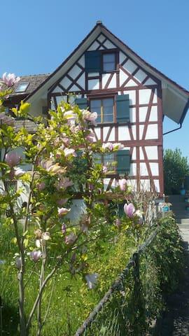 Romantisches Paradies am Rhein -  Eschenz - Huis