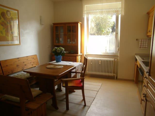 Schöne Wohnung mit Garten - Heidelberg - Appartement