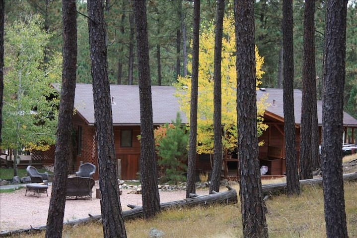 Cabin and Studio Guest Quarters on 5 acres