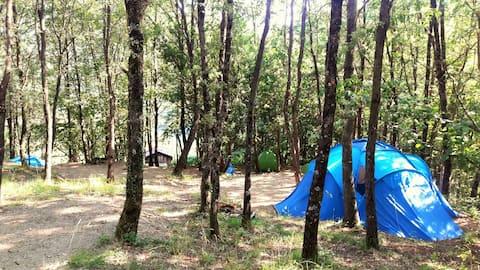 Agricampeggio piazzola e tenda propria -Borzonasca