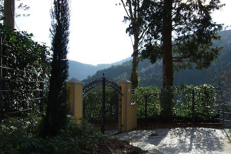 Olive house - Ruota, Colle di Compito