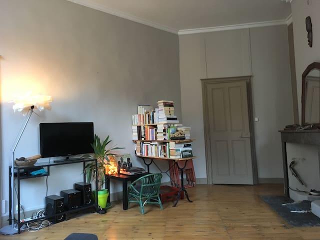 Grand appartement lumineux coeur historique