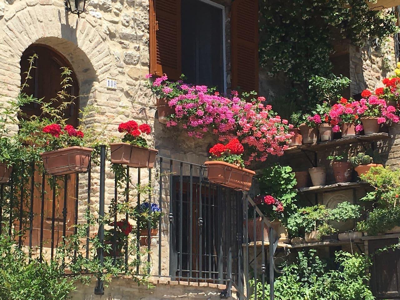Il Sementone, ingresso fiorito