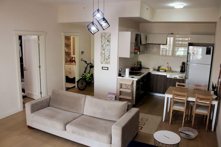 Furnished condominium in Venezia Mega Residence