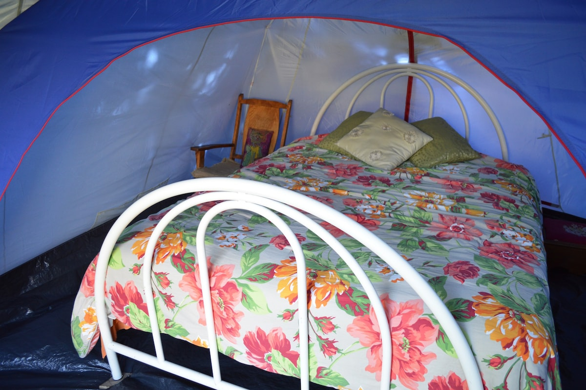 Private Queen size Tent Bedroom Private Queen size Tent Bedroom & queen tent bed organic urban farm stay with meals - Tents for Rent ...