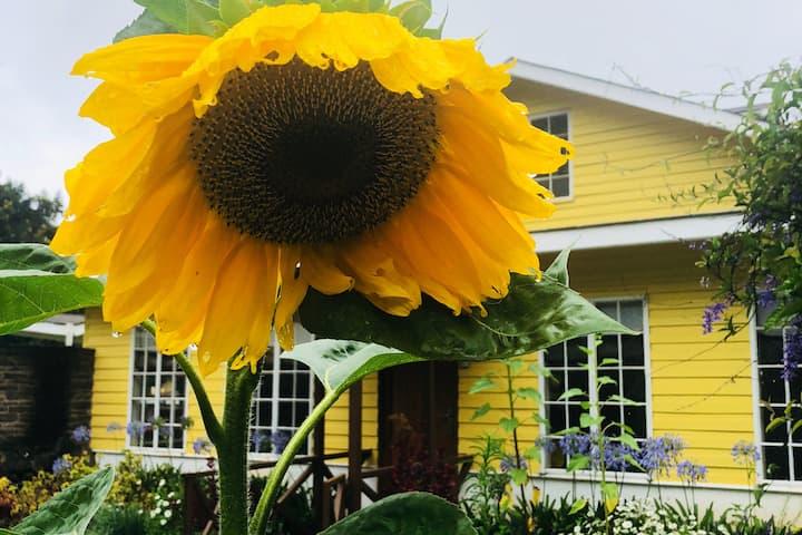 Casa Girasole(The Sunflower FarmHouse)