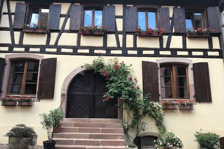 Bienvenue Gîte Les Hirondelles Eguisheim