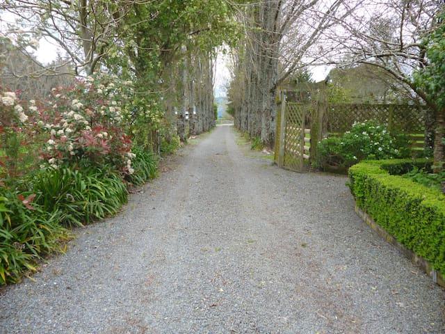 Aratahi Cottage - Carterton - Rumah Tamu