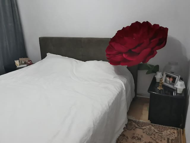 Room for rent  in Iasi, city suburbs
