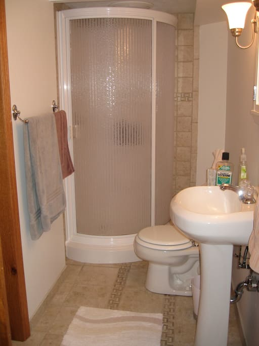 Basement bathroom. Stand-up shower only, no tub.