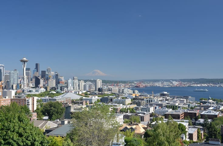 Iconic Seattle View