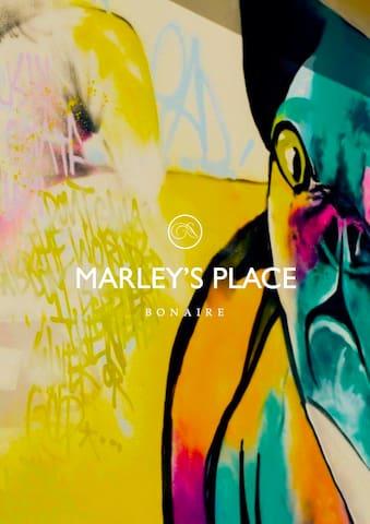 Marley's Place - Kralendijk - Huis