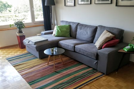 Lovely furnished apartment in quiet area - 蘇黎世 - 公寓
