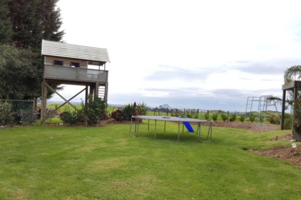 Backyard with tree house