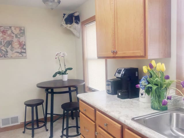 Cozy remodel on charming, quiet, St Paul street