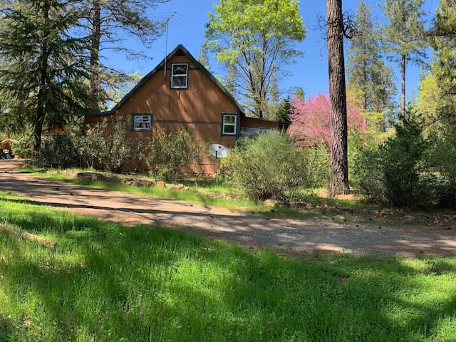 PoNdERoSa PiNeS WoOdLaNd FoReSt FarmHouse HideAway