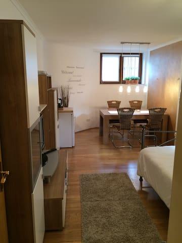 ruhige 1 - Zimmer Wohnung in Bad Homburg - Bad Homburg vor der Höhe - Espais annexos