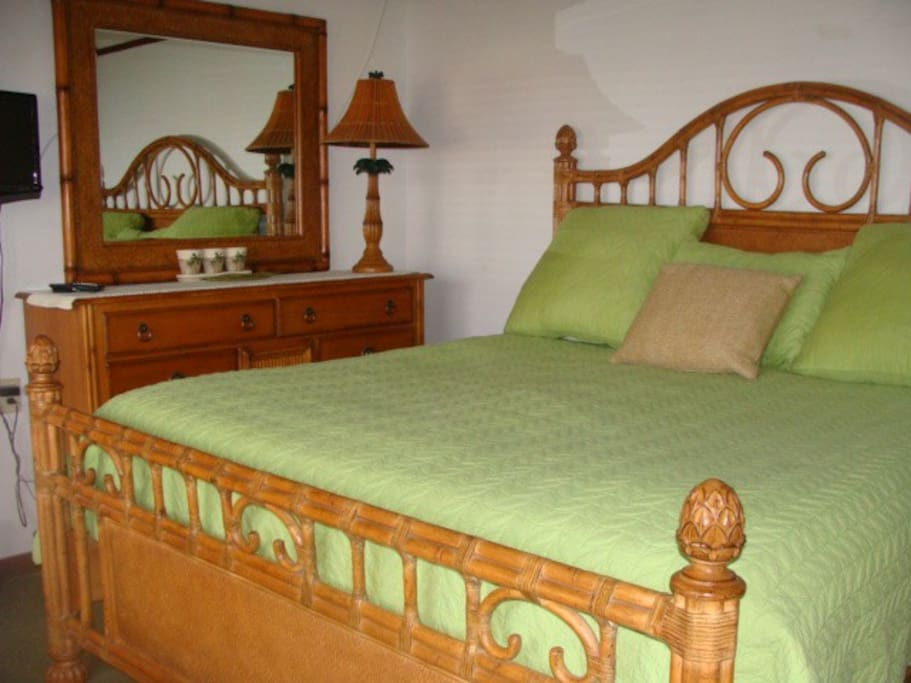 2nd Master Bedroom w/king bed. Private bathroom with shower. LED TV/DVD