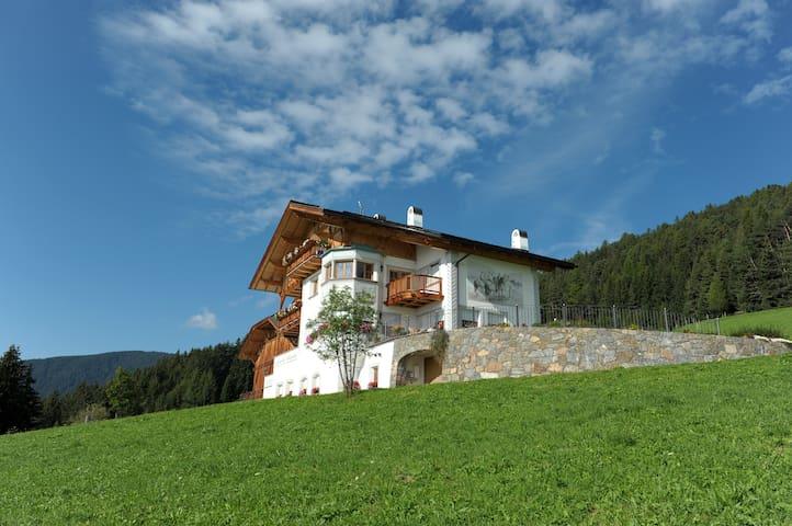 """Amazing Dolomites View """"Radhof"""""""