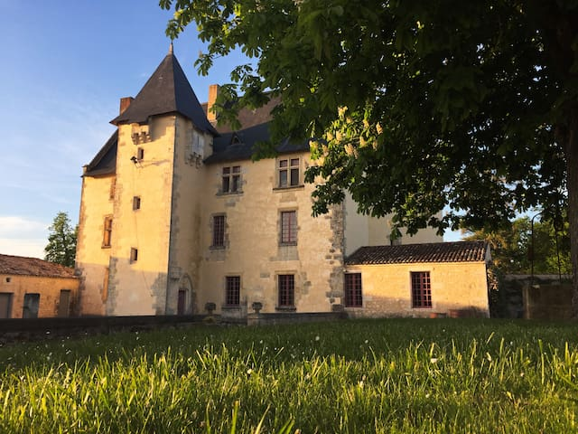 Live like kings and queens: luxury and calm - Soulignonne - Castelo