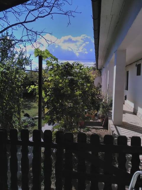 TiSZa-Tô Vendêghâz