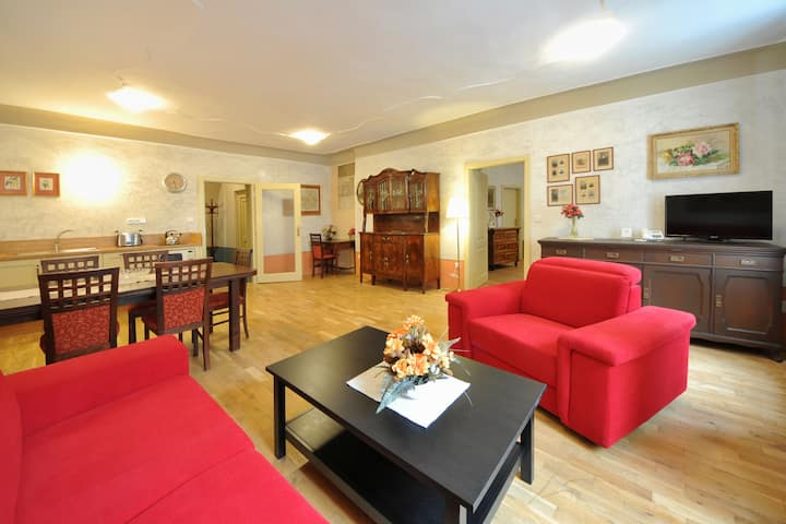 Stylish apartment for 6 people near the castle
