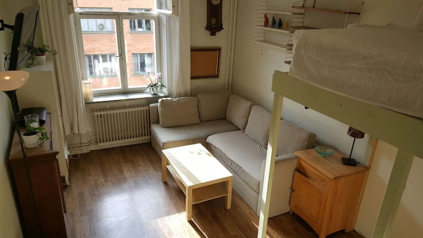 Studio Apartment in the City! - Stokholm - Daire