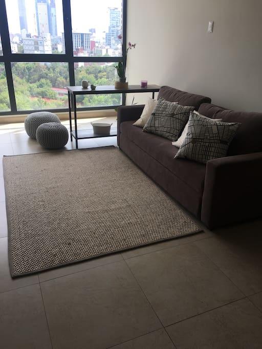 Estancia o sala, con tv y sofá cama