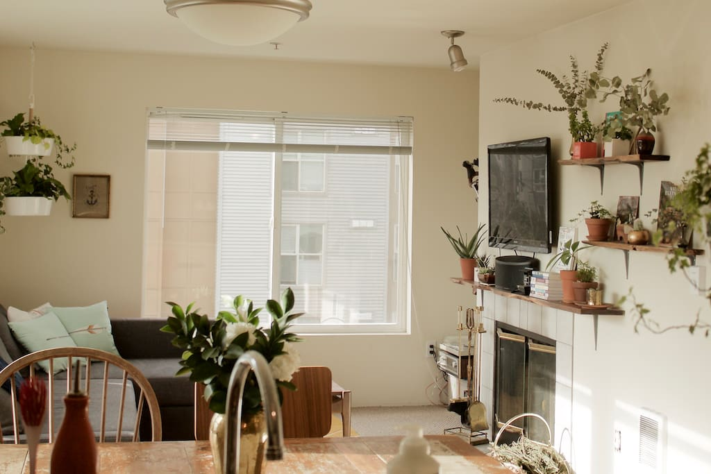 The main living area has a pull-out sofa, large-screen smart TV, handmade walnut shelves, a variety of plant life, a large working table, and gorgeous, top-floor, corner unit views of the city and mountains.