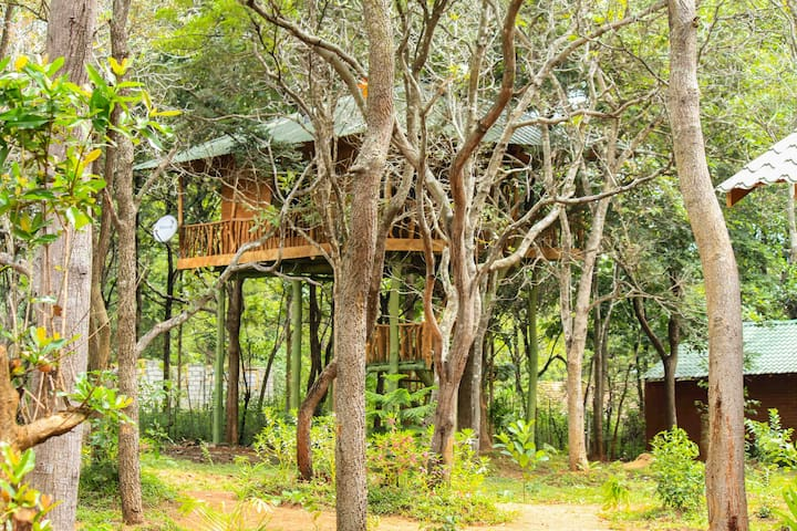 Lotus Eco Villa Tree House