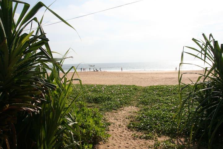 Elephant Garden 2 - ฮิคคาดูวา - บ้าน