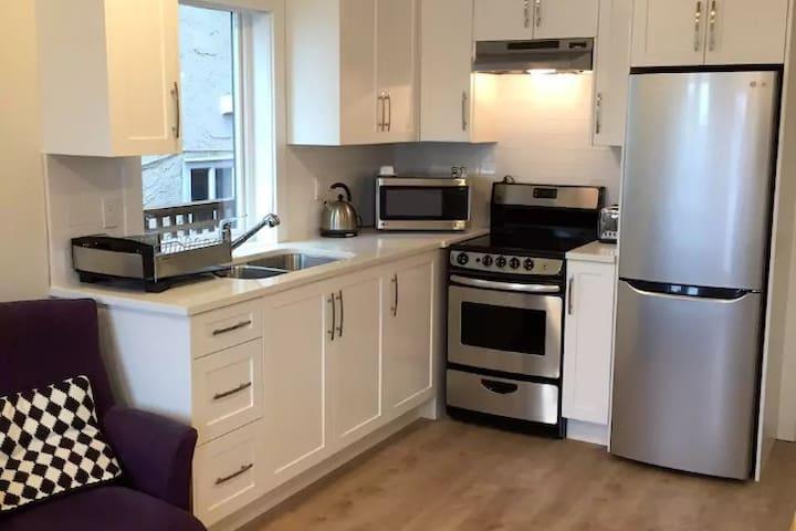 New Renfrew-Collingwood suite: 20 mins to downtown