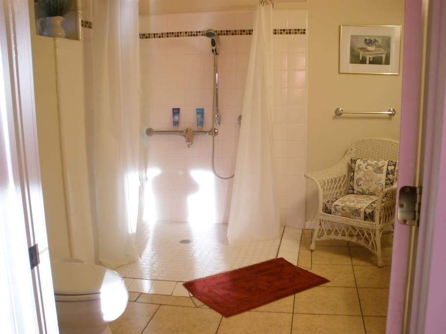 Wheelchair accessible shower.  The height of the shower head is adjustable.  The toilet is a high toilet.