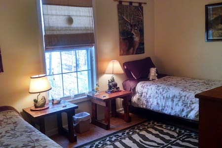 Charming room with twin beds. - Pisgah Forest
