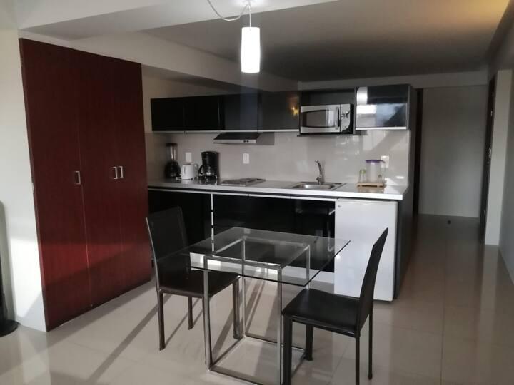 Beautiful Apartment in Reforma