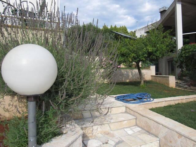 Apartments Adriatic / Studio A1 - Gradac - Appartement