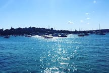 take a ferry from Rosebay