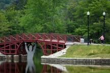 Visit Elm Park