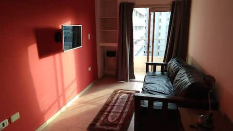 Large downtown apartment and close to terminals