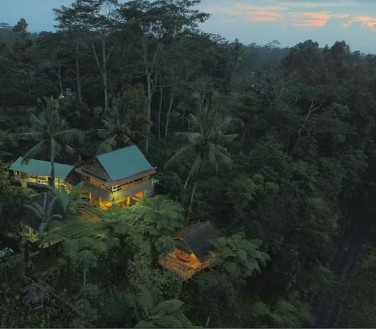Eco Bamboo House With Incredible Forest Views.
