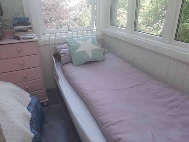 Wintergarden in old house