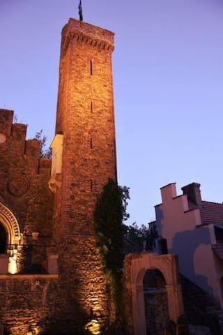 Zamek Rajsko.Zamek na wyłączność - Olszyna