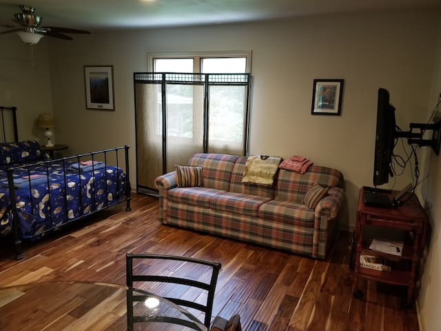 Apartment layout is flexible for those who would like more open space and use pull-out couch.