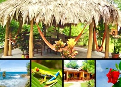 Escape to the Caribbean Nature !