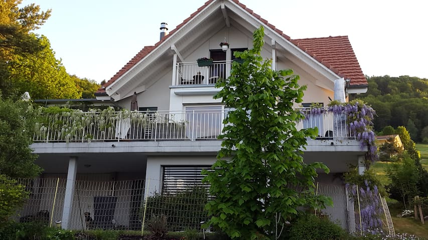 Jurablick - Wohnung mit Naturpool